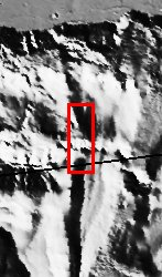 figure 1 for PIA05959