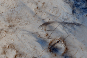Click here for larger version of PIA10226 Figure 1 Dust-Devil Tracks in Southern Schiaparelli Basin