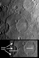 Click here for larger version of figure 1 for PIA11959