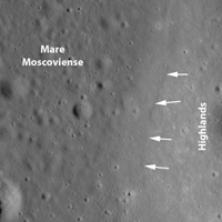 Click here for annotated version of figure 1 for PIA12904
