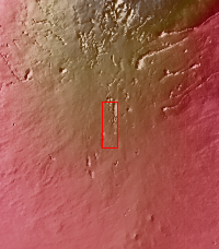 Context image for PIA13541