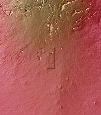 Context image for PIA16505