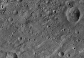 Click here for larger version of PIA17480 Oppia