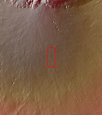 Context image for PIA21664