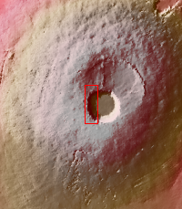 Context image for PIA22024
