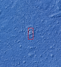 Context image for PIA24883