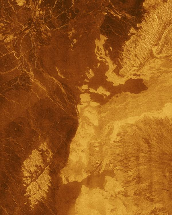 This false color image from NASA's Magellan spacecraft shows a portion of Bereghinya Planitia (plains) in the northern hemisphere of Venus.