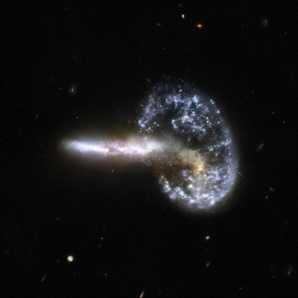 Arp 148 is nicknamed 'Mayall's object' and is located in the constellation of Ursa Major, the Great Bear, about 500 million light-years away. This image is part of a large collection of images of merging galaxies taken by NASA's Hubble Space Telescope.