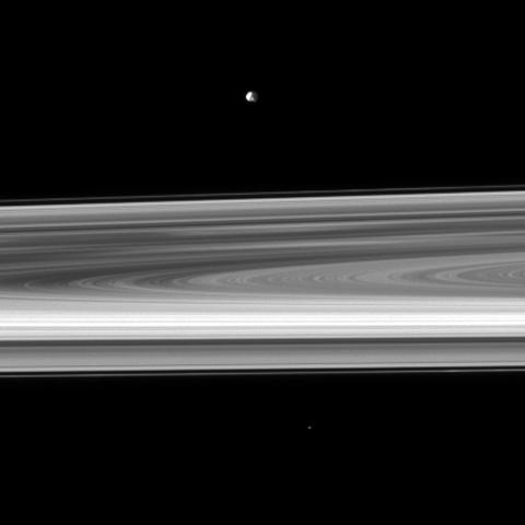 Orbiting near the plane of Saturn's rings, NASA's Cassini spacecraft looks across the span of the rings to spy the small moon Epimetheus. The brightest spoke is visible on the left of the image.