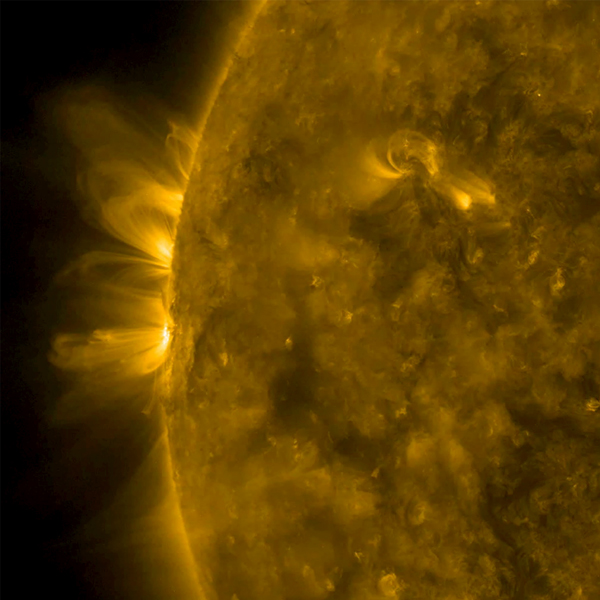 NASA's Solar Dynamics Observatory captured agnetic arcs of plasma that spiraled above two active regions held their shape fairly well over 18 hours on Jan. 11-12, 2017.