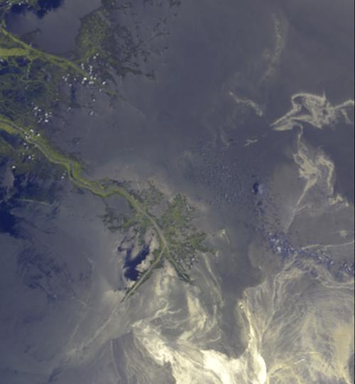 This image acquired on May 24, 2010 by NASA's Terra spacecraft shows oil from the former Deepwater Horizon rig encroaching upon several of Louisiana's wildlife habitats.