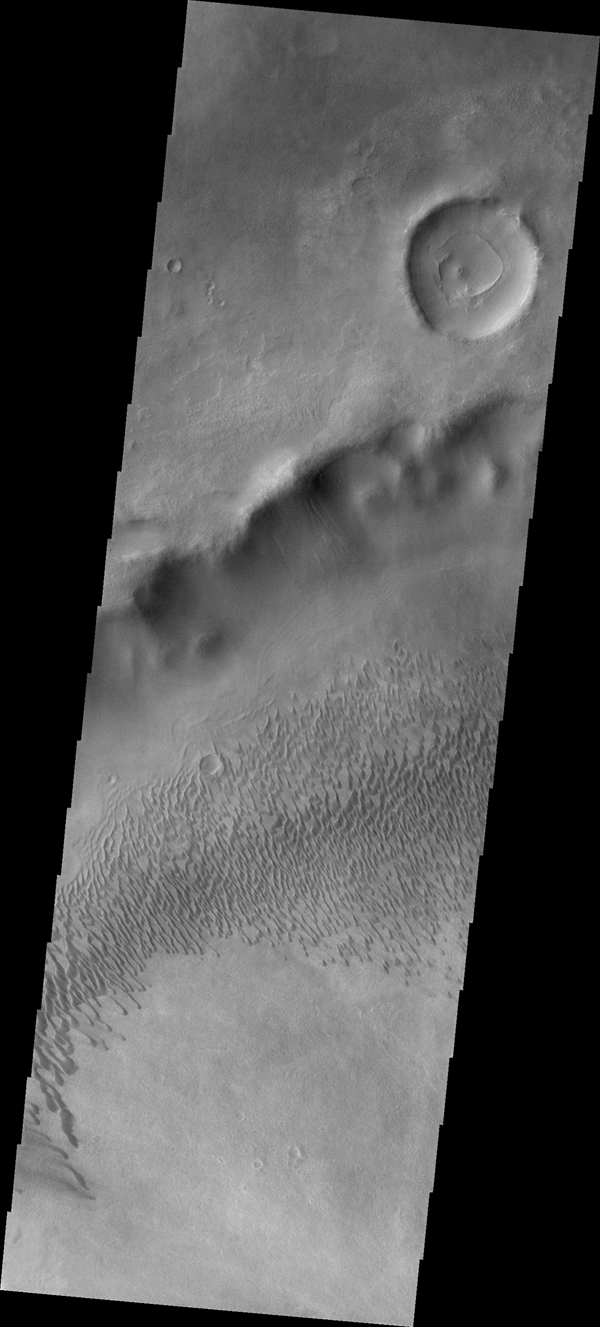 This image NASA's 2001 Mars Odyssey spacecraft shows part of the dune field on the floor of Brashear Crater.