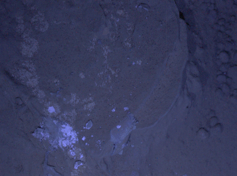 This image of a Martian rock dubbed 'Sayunei' is illuminated by ultraviolet LEDs (light emitting diodes) is part of the first set of nighttime images taken by the Mars Hand Lens Imagery camera at the end of the robotic arm of NASA's Mars rover Curiosity.