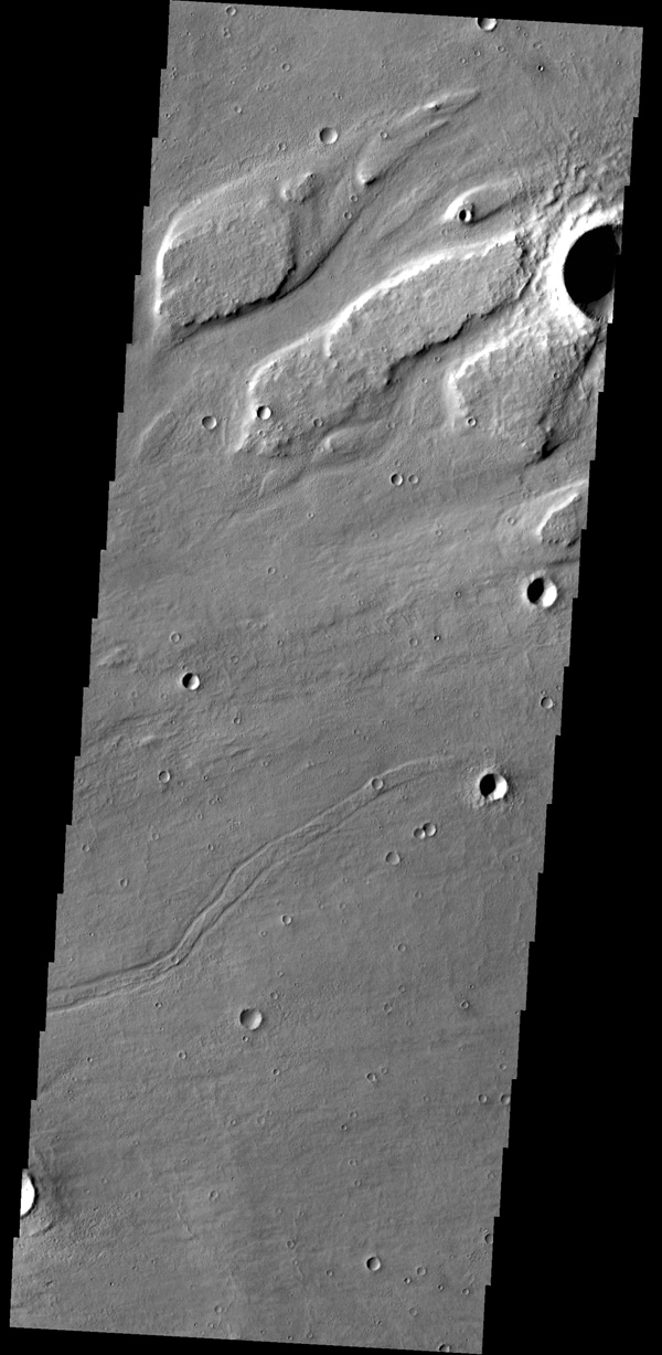 This image from NASA's 2001 Mars Odyssey spacecraft shows streamlined islands within part of Kasei Valles.