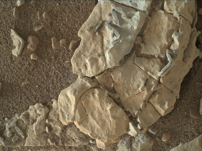 This image from NASA's Mars Science Laboratory Curiosity rover shows dark, stick-shaped features clustered on this Martian rock about the size of grains of rice.
