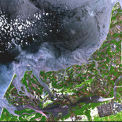 In many parts of the world, wetlands are being converted to shrimp ponds in order to farm these crustaceans for food and sale. One example is on the west coast of Ecuador, south of Guayaquil. This image was acquired by NASA's Terra spacecraft.