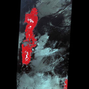 The false-color VNIR image from NASA's Terra spacecraft was acquired off the island of Tsushima in the Korea Strait shows the signatures of several internal wave packets, indicating a northern propagation direction.
