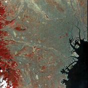 This image of the city of Tokyo was acquired on March 22, 2000 by the Advanced Spaceborne Thermal Emission and Reflection Radiometer (ASTER) on NASA's Terra satellite.