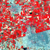 Dramatic differences in land use patterns are highlighted in this image of the U.S.-Mexico border acquired by NASA's Terra satellite.