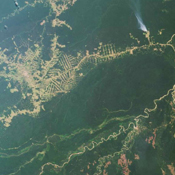 Rio Brancois the capital of the Brazilian state of Acre and is situated near the border with northeastern Bolivia. This image from NASA's Terra satellite was acquired on July 28, 2000.