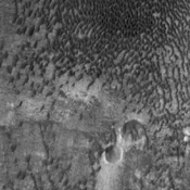 This NASA Mars Odyssey image shows a remarkable array of dunes on the floor of a large impact crater named Baldet. Many of the dunes in this region are isolated features with large, sand-free 'interdune' surfaces between the individual dunes.
