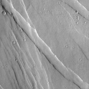 Extensional forces in the volcanic province of Tharsis, shown in this image from NASA's Mars Odyssey spacecraft, have produced a fractured terrain that resembles wrinkled skin.