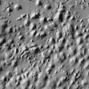 The style of erosion along the highlands-lowlands boundary of southern Elysium Planitia has produced a strange pattern of troughs that look like the skin of a reptile, as seen in this image from NASA's Mars Odyssey spacecraft.
