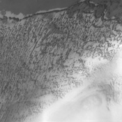The large sand sheets and dunes observed in this image from NASA's Mars Odyssey are located near the north pole of Mars. Changes in surface albedo across the image are likely due to variable thicknesses of dark sand that covers lighter surfaces.