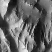 This NASA Mars Odyssey image shows 'Lycus Sulci,' a region of ridges and hills located north-northwest of the volcano Olympus Mons. Several dust avalanches on the flanks of the roughly textured surfaces suggest a thick coating of fine-grained materials.