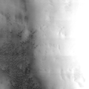 Dunes in the Vastitas Borealis region of Mars are seen in this image from NASA's Mars Odyssey spacecraft. These sand seas migrate around the north polar cap following the strong polar vortex winds.