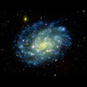 Young hot blue stars dominate the outer spiral arms of nearby galaxy NGC 300, while the older stars congregate in the nuclear regions which appear yellow-green in this image from NASA's Galaxy Evolution Explorer.
