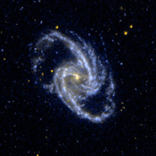 This ultraviolet image from NASA's Galaxy Evolution Explorer shows barred spiral galaxy NGC 1365, which is a member of the Fornax Cluster of Galaxies.