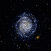 This ultraviolet image from NASA's Galaxy Evolution Explorer is of the large face on spiral galaxy NGC 3344. The inner spiral arms are wrapped so tightly that they are difficult to distinguish.