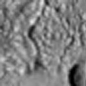 The odd ridges in this image from NASA's Mars Odyssey spacecraft are located on the floor of an unnamed impact crater. The ridges probably formed when a resistant material filled in cracks in a less-resistant material that has since been eroded away.