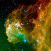 This image from NASA's Spitzer Space Telescope shows infant stars