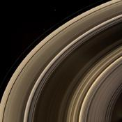 From on high, the Cassini spacecraft spies a group of three ring moons in their travels around Saturn. Janus is seen at top, while Pandora hugs the outer edge of the narrow F ring. More difficult to spot is Pan, which is a mere speck in this view.