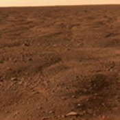 Images taken by NASA's Phoenix Mars Lander's Surface Stereo Imager, combined into a panoramic view looking north from the lander.