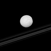 The right-hand limb of Saturn's moon Mimas appears flattened as Herschel Crater is viewed edge-on in this image from NASA's Cassini spacecraft. The planet's rings are in the background.
