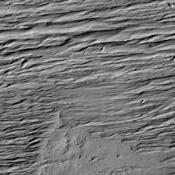 This image from NASA's 2001 Mars Odyssey is located south of Olympus Mons and east of Gordii Dorsum, in a heavily wind eroded region. The winds are predominately east/west in this area.