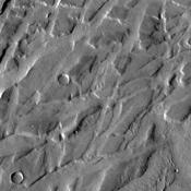 Tempe Terra is criss-crossed with numerous fracture systems. This image from NASA's Mars Odyssey shows a region where the fractures are intersecting,