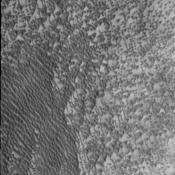 By high summer, the extensive dune fields of the north polar region are completely defrosted and the number and variety of dunes are readily visible. This image was captured by NASA's Mars Odyssey on August 31, 2010.