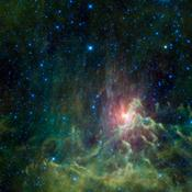 NASA's Wide-field Infrared Survey captured this view of a runaway star racing away from its original home. Surrounded by a glowing cloud of gas and dust, the star AE Aurigae appears on fire. Appropriately, the cloud is called the Flaming Star nebula.
