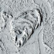 This observation from NASA's Mars Reconnaissance Orbiter covers a portion of the Martian equatorial plains called Elysium Planitia. In this location, lava that was once flowing across the surface interacted with multiple obstructions.