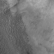 The individual dunes in this image from NASA's Mars Odyssey are moving along a hard surface in Nili Patera.