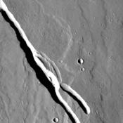Located on the southern part of the Elysium Mons Volcanic region the channels in this image captured by NASA's Mars Odyssey were likely formed by the flow of lava.