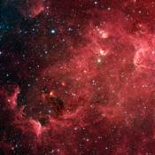 This infrared image from NASA's Spitzer Space Telescope shows a swirling landscape of stars known as the North America nebula. Clusters of young stars (about one million years old) can be found throughout the image.