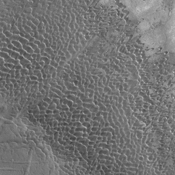 These dunes are moving along the hard volcanic surface Nili Patera in Syrtis Major. This image was captured by NASA's Mars Odyssey.