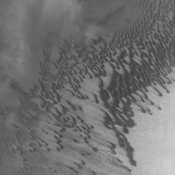 The dunes seen in this view from NASA's 2001 Mars Odyssey spacecraft are located on the floor of Brashear Crater.