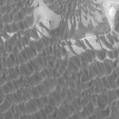 This image captured by NASA's 2001 Mars Odyssey spacecraft shows part of the dune field on the floor of Rabe Crater.
