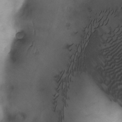 Terra Sirenum is the location of this image from NASA's 2001 Mars Odyssey spacecraft. The unnamed crater has dunes on its floor.